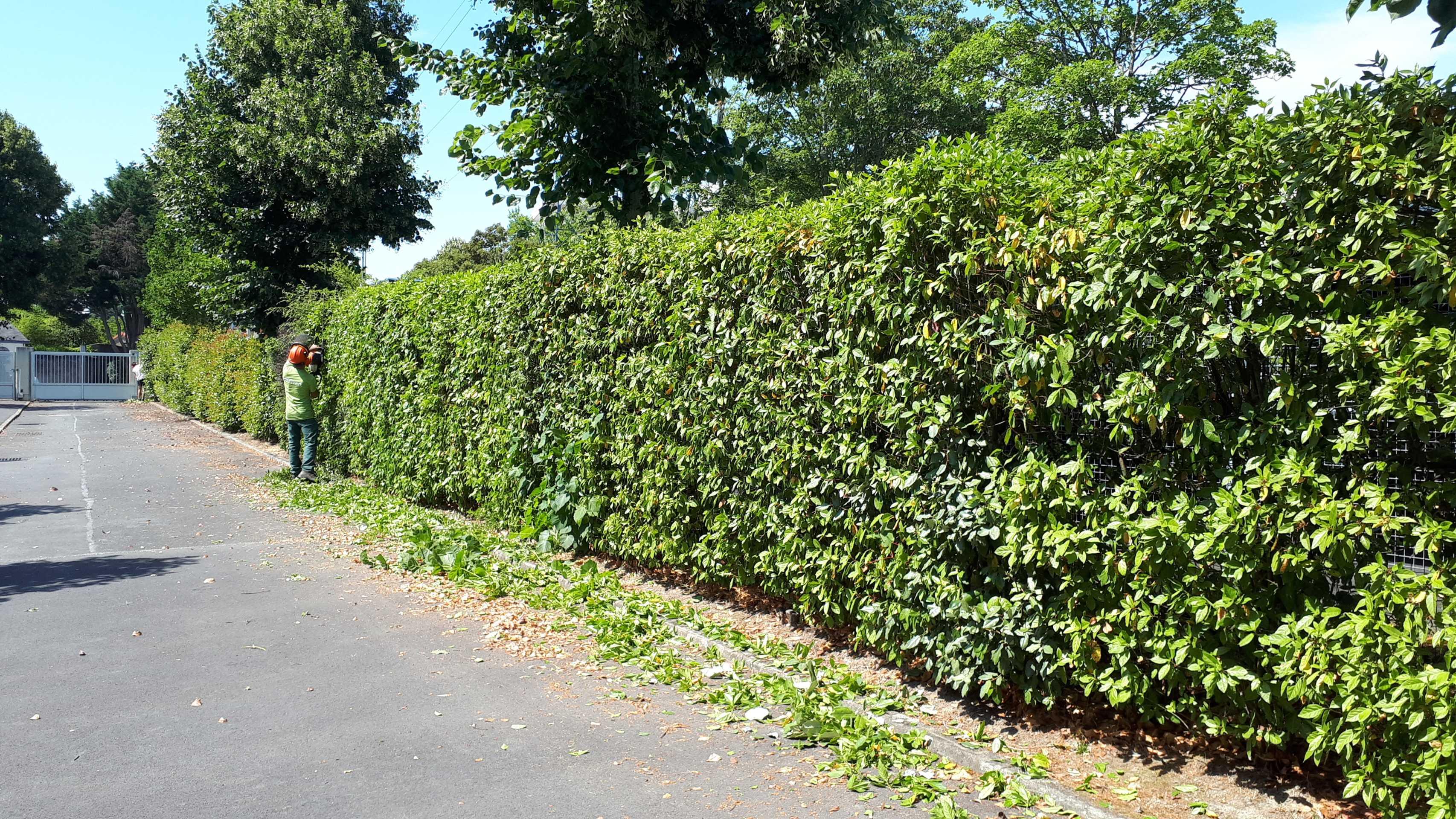 effivert entretien espace verts