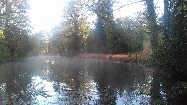 étang bagatelle