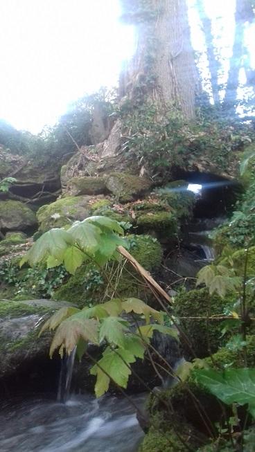 cascade bagatelle